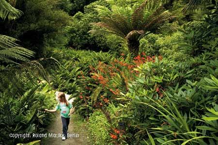 Busrundreise Die Gärten Südenglands Und Cornwalls
